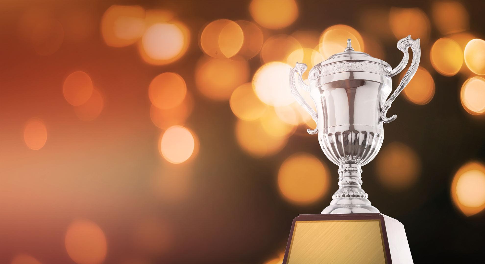 wns wins seven stevie awards